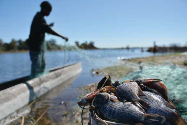 Govt. ban blow to fisherman