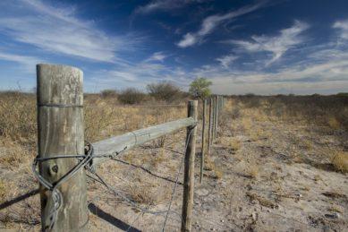 EIA Committee quashes Ghanzi farmer's claim that mining bad for environment